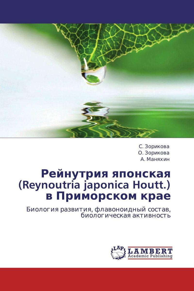Рейнутрия японская (Reynoutria japonica Houtt.) в Приморском крае