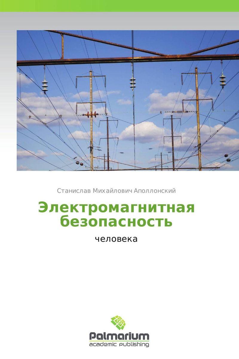 Электромагнитная безопасность основы электромагнитной безопасности учебное пособие