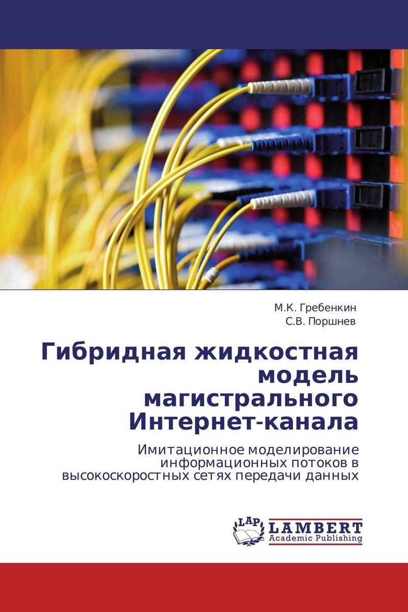 Гибридная жидкостная модель магистрального Интернет-канала интернет магазин guess распродажа интернет