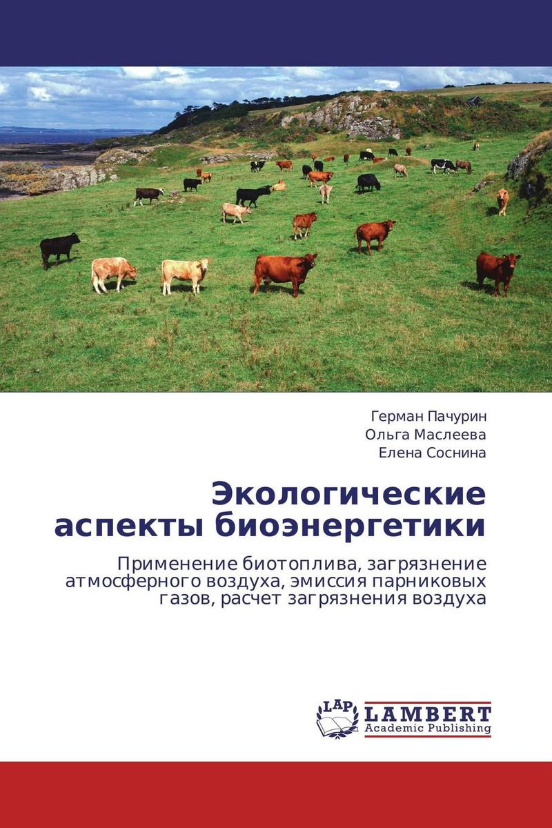 Экологические аспекты биоэнергетики