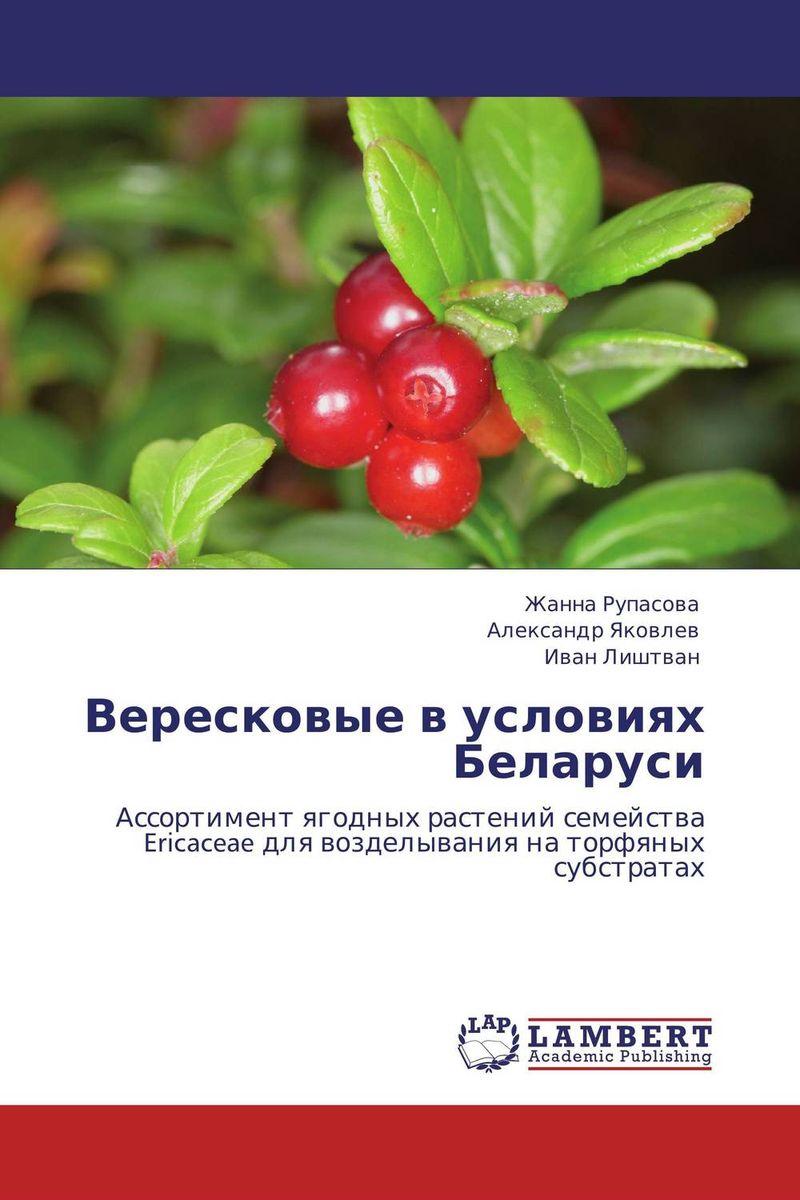 Вересковые в условиях Беларуси lamoda ru в беларуси