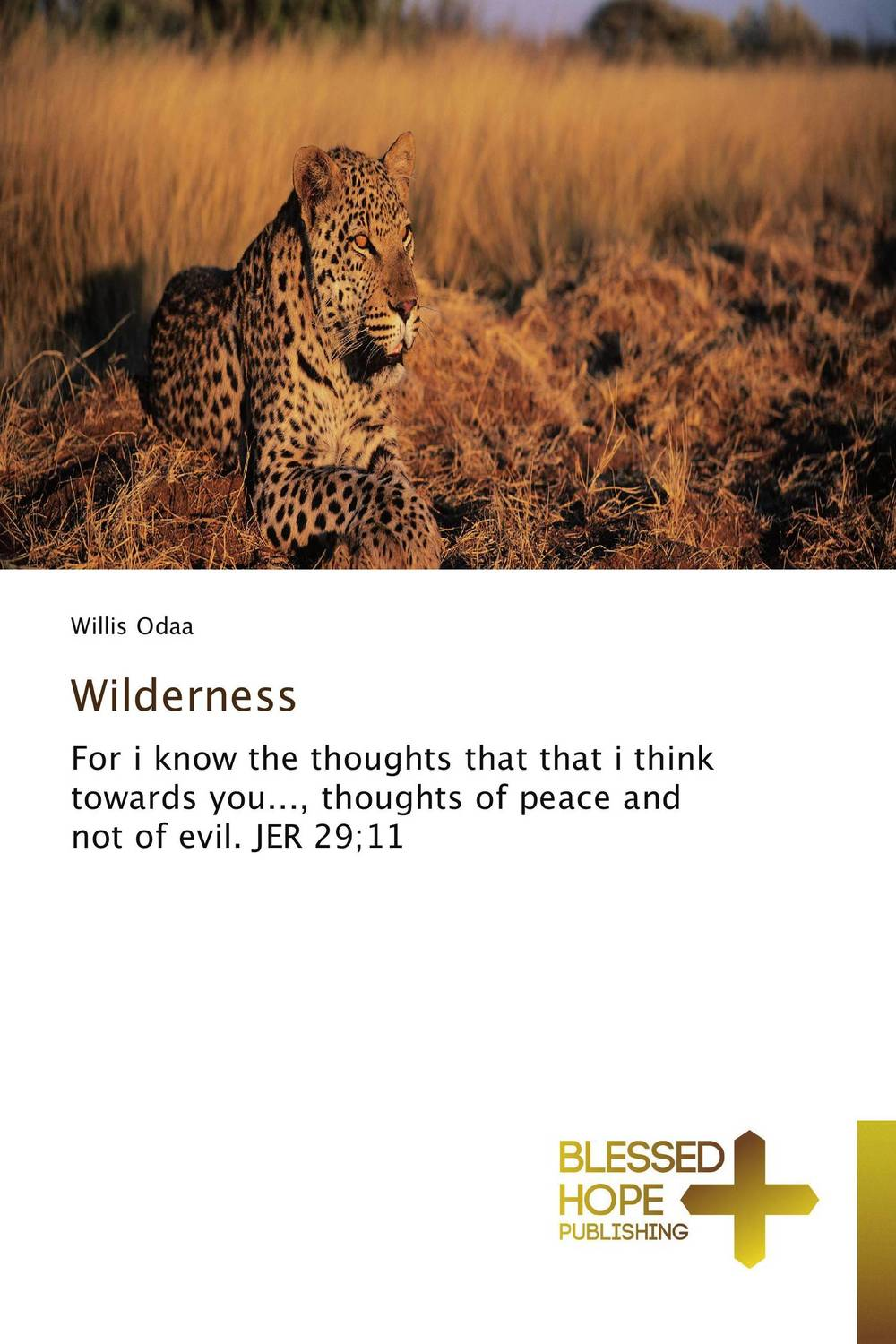 Wilderness what you must know