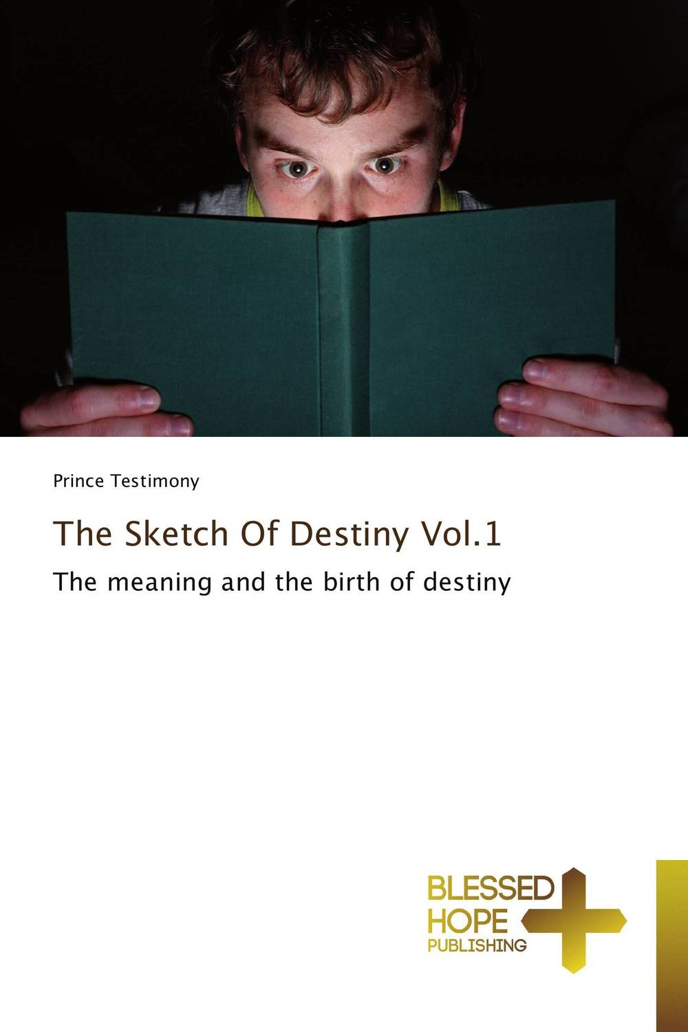 The Sketch Of Destiny Vol.1