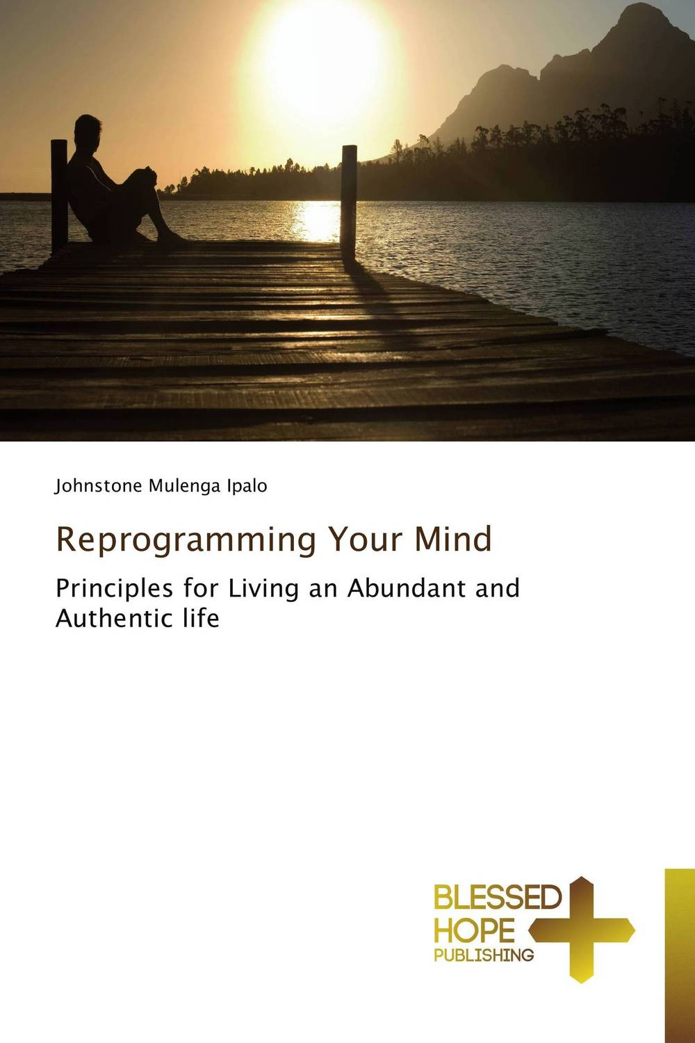 Reprogramming Your Mind razi imam driven a how to strategy for unlocking your greatest potential