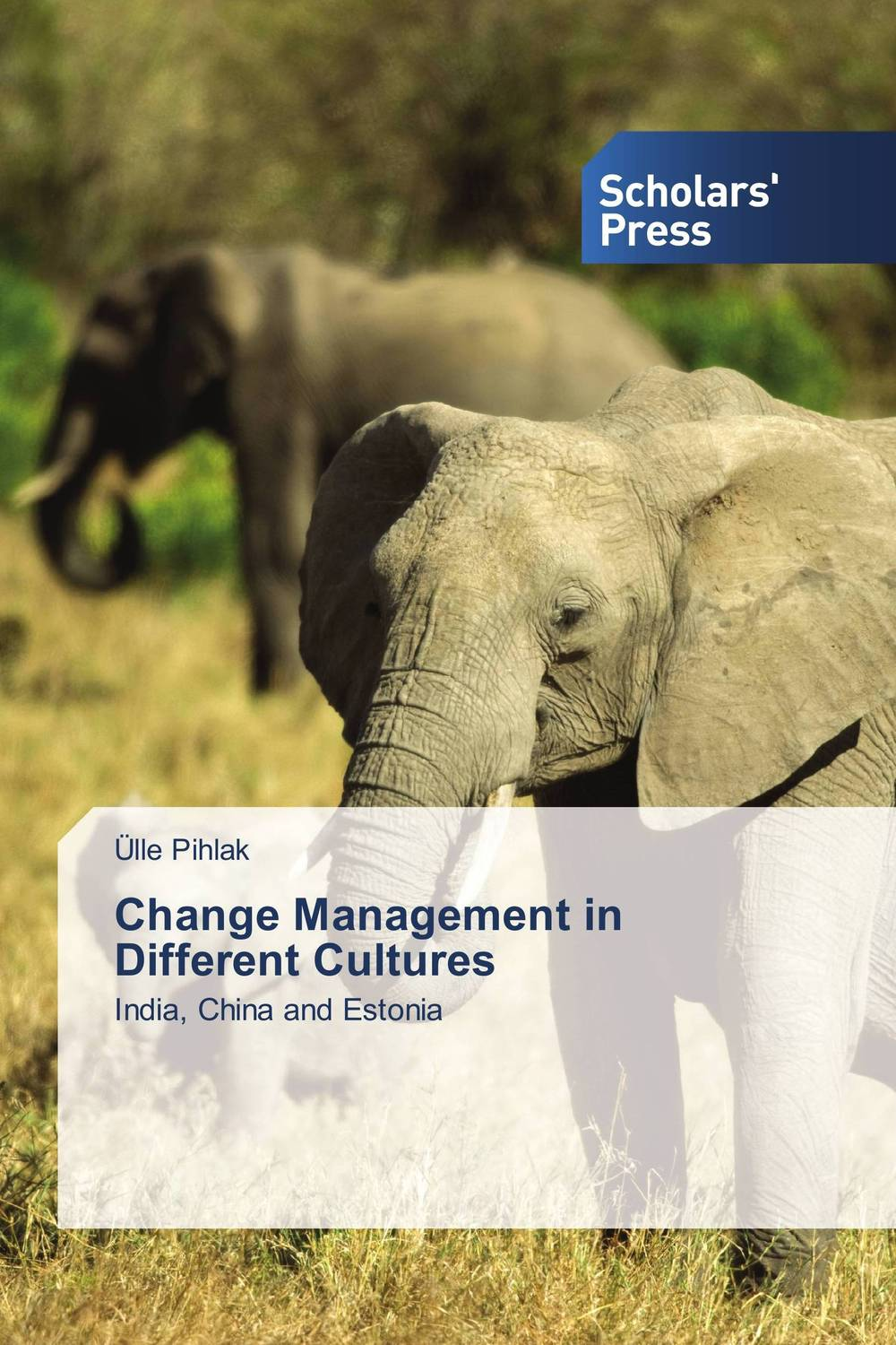 Change Management in Different Cultures teach yourself change and crisis management