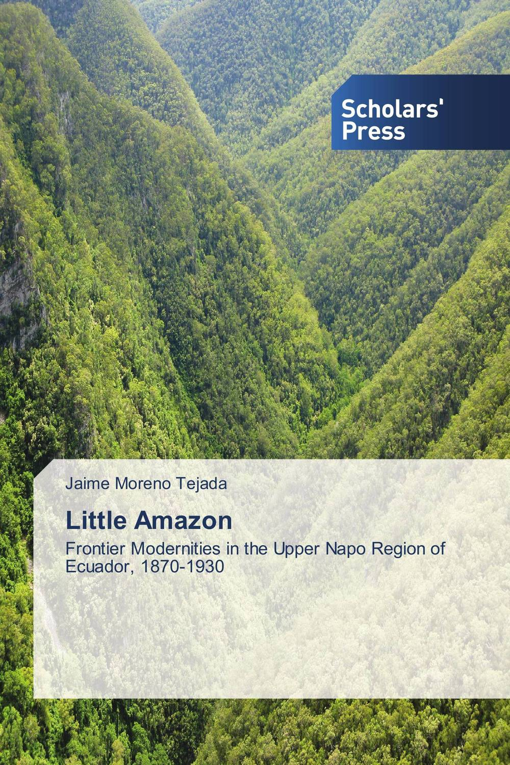 Little Amazon affair of state an