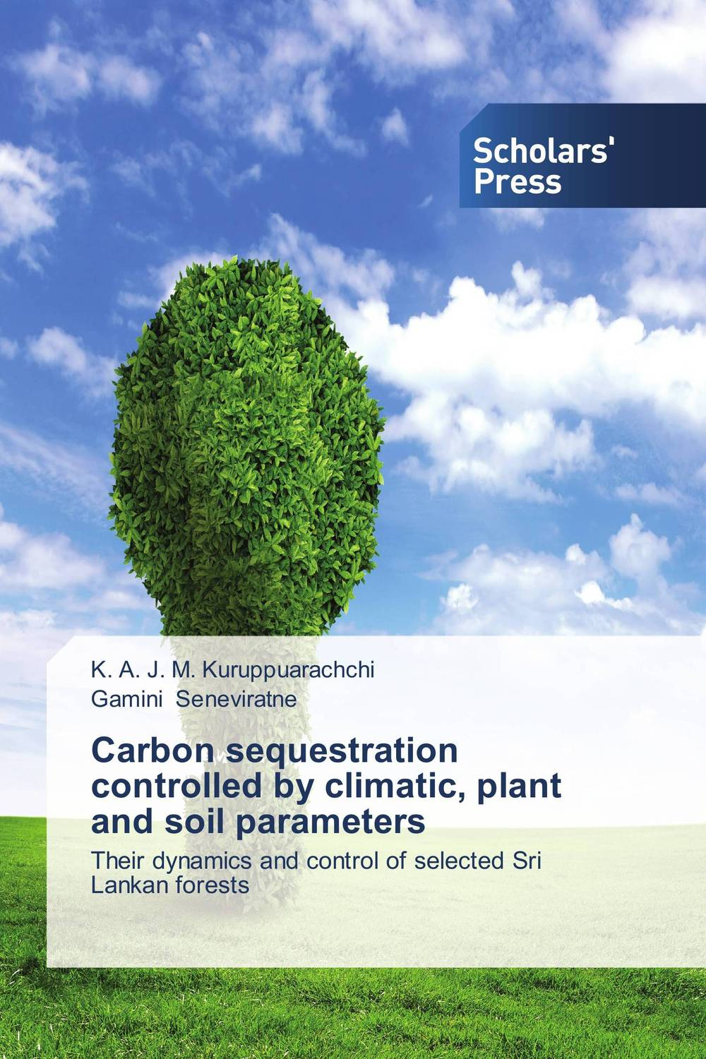 Carbon sequestration controlled by climatic, plant and soil parameters sanat kumar das and achuthan jayaraman atmospheric radiative forcing