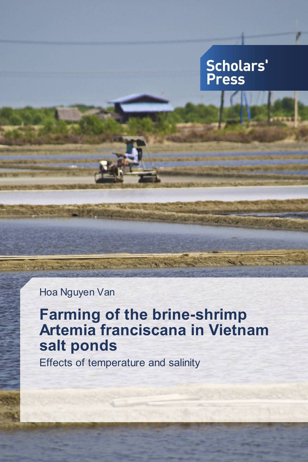 Farming of the brine-shrimp Artemia franciscana in Vietnam salt ponds new hot 22cm sexy in solitude where we are least alone kasugano sora action figure toys collection doll christmas gift with box