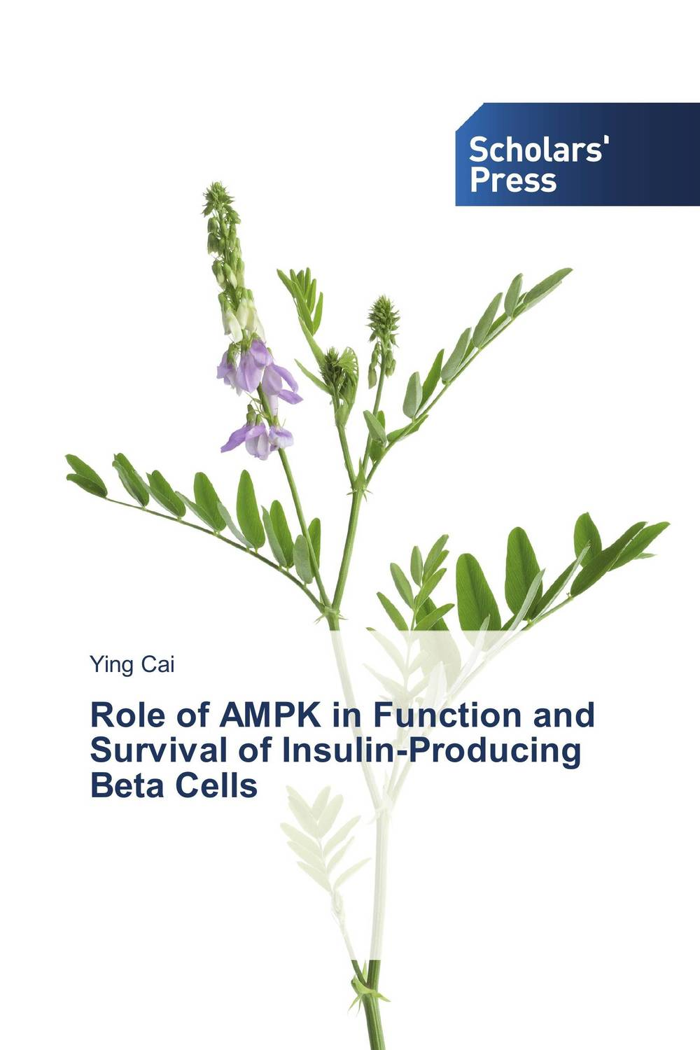 Role of AMPK in Function and Survival of Insulin-Producing Beta Cells methionine supplementation alters beta amyloid levels in brain cells