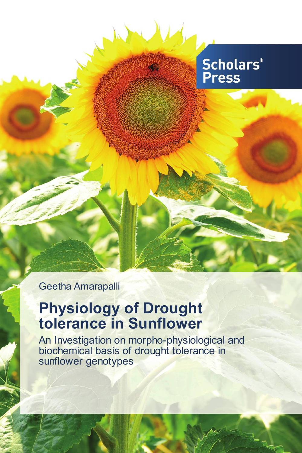 цена на Physiology of Drought tolerance in Sunflower