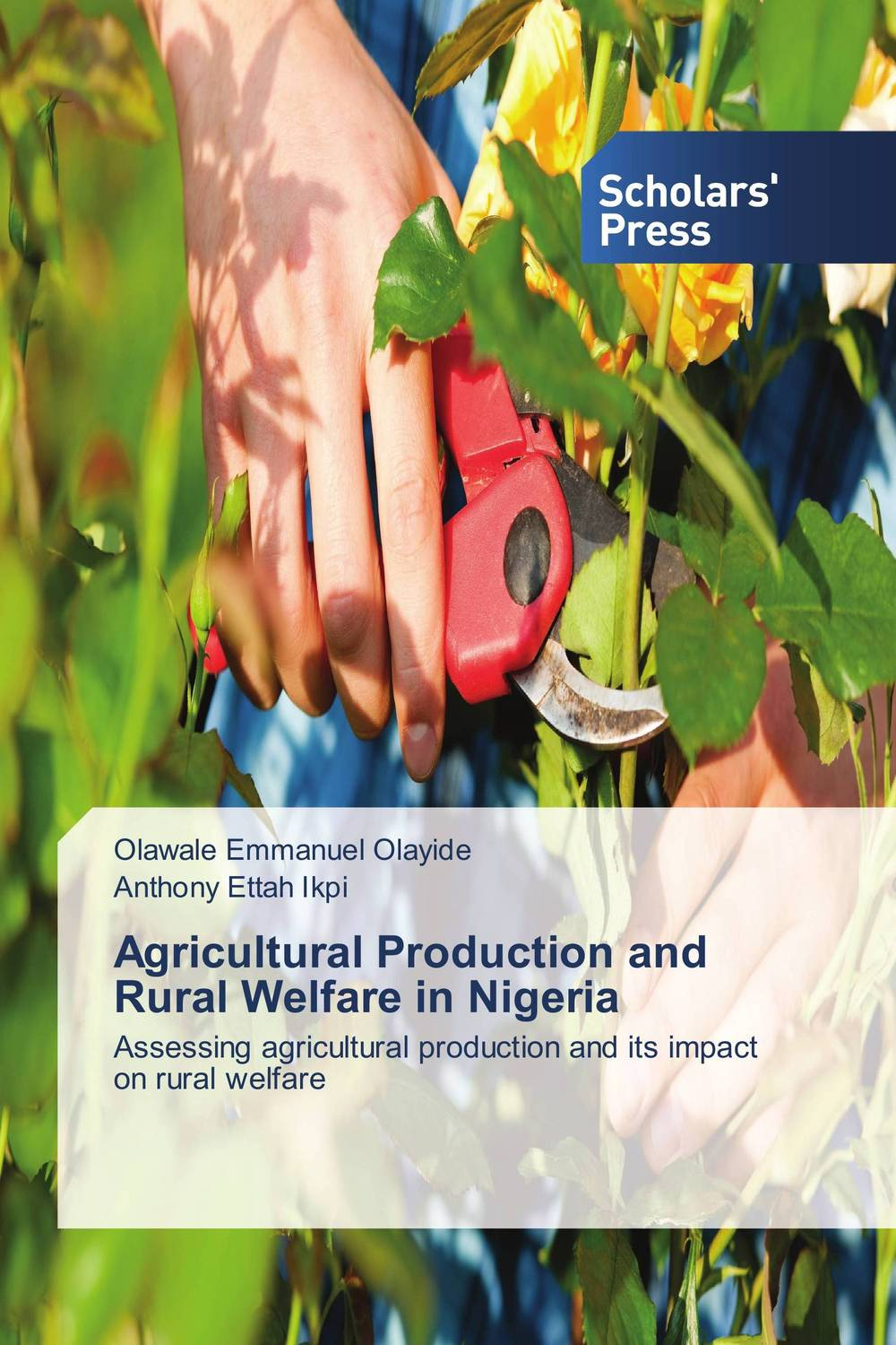 Agricultural Production and Rural Welfare in Nigeria sikhulumile sinyolo smallholder irrigation water security and rural household welfare