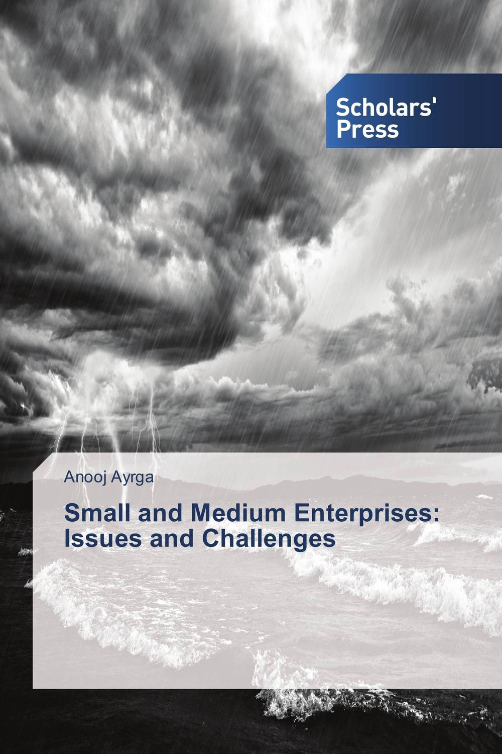 Small and Medium Enterprises: Issues and Challenges janet norton on the other side the fall