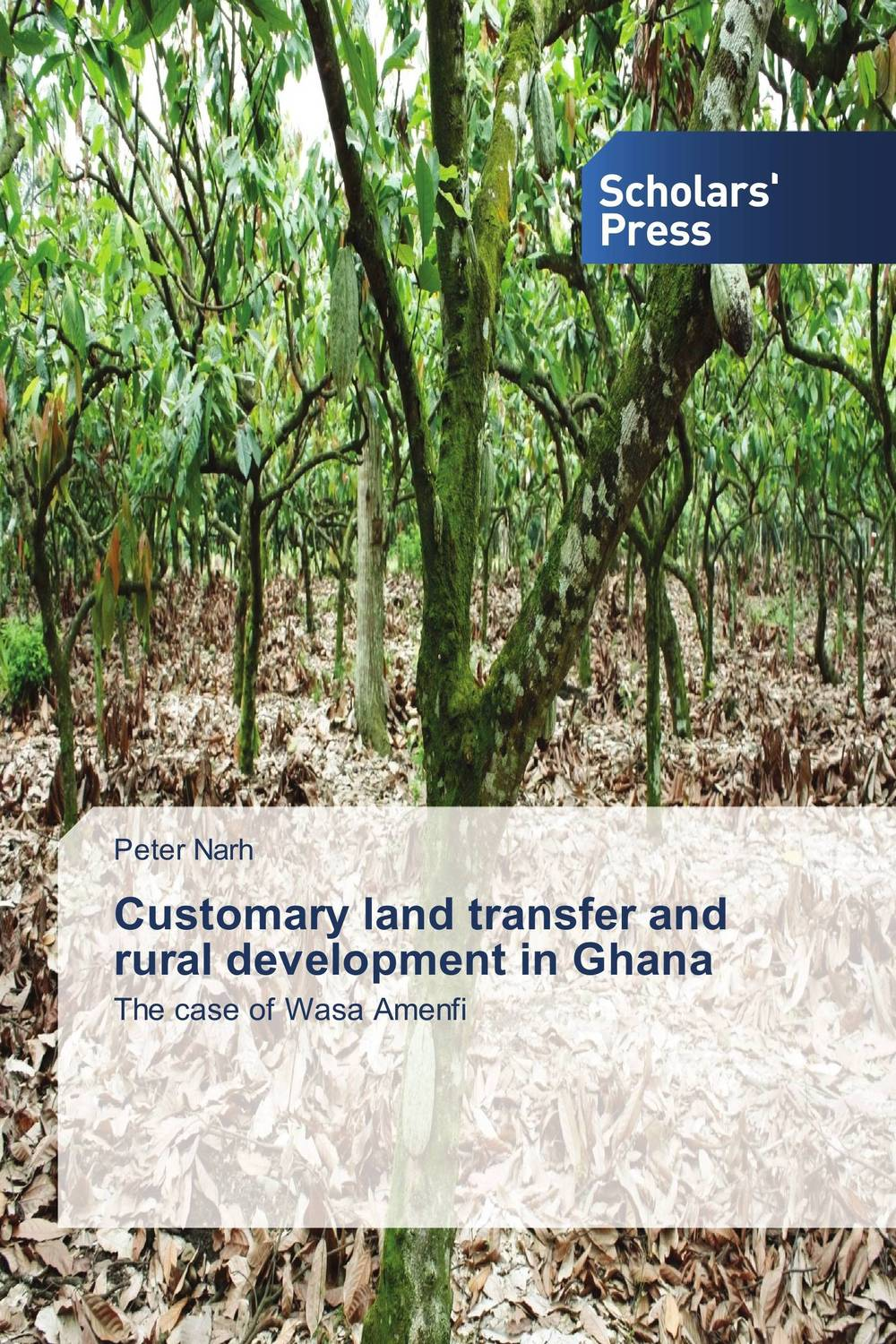 Customary land transfer and rural development in Ghana