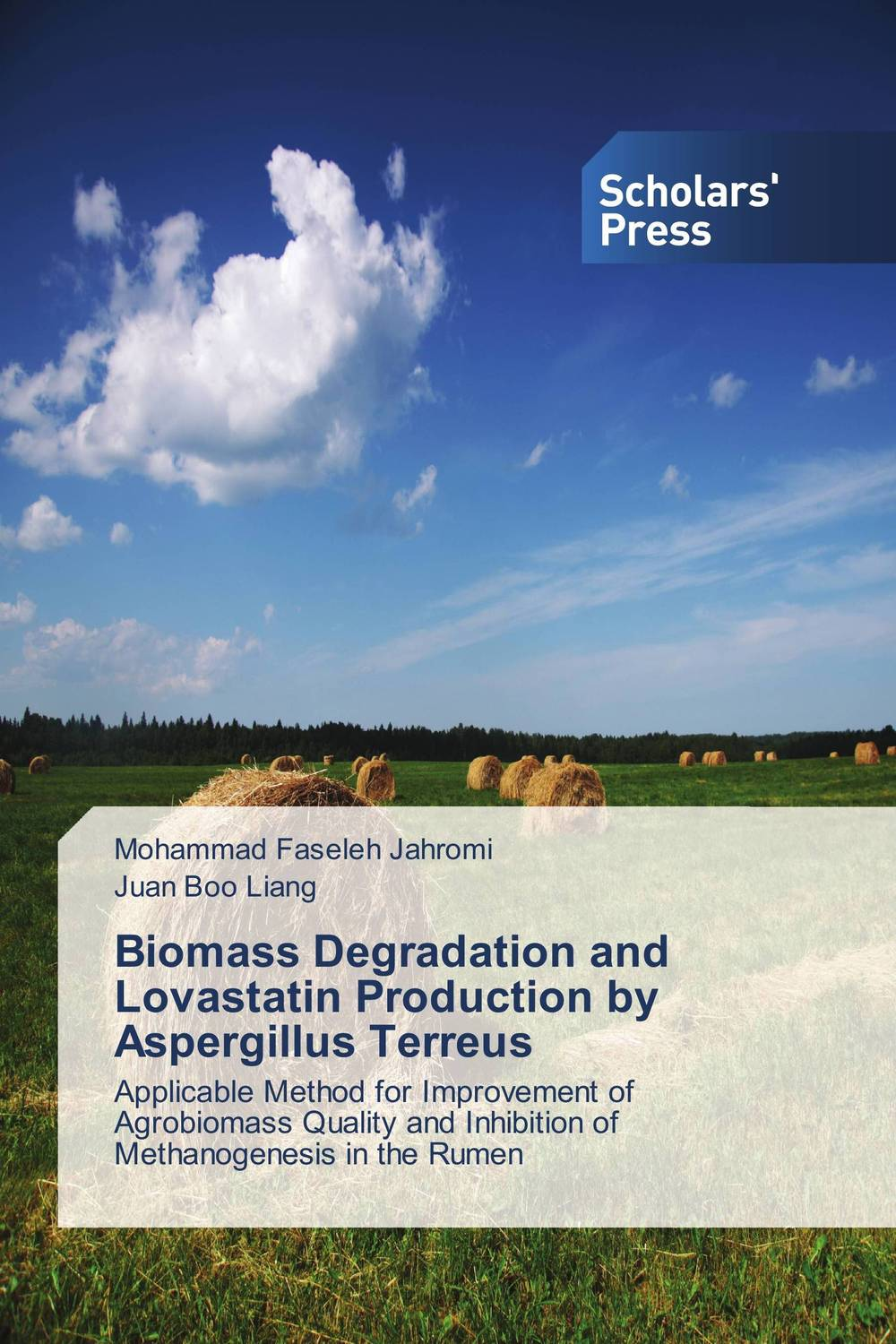 Biomass Degradation and Lovastatin Production by Aspergillus Terreus cold storage accessibility and agricultural production by smallholders