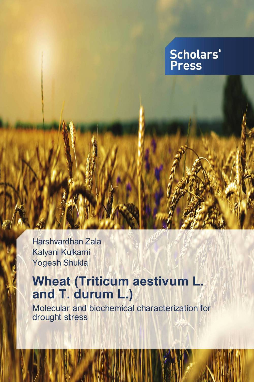 Wheat (Triticum aestivum L. and T. durum L.)
