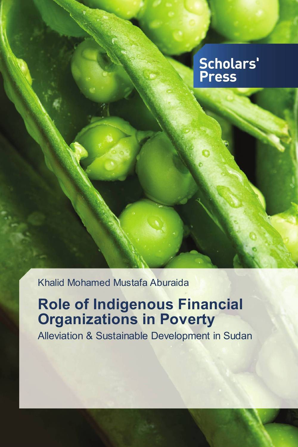 Role of Indigenous Financial Organizations in Poverty role of ict in rural poverty alleviation