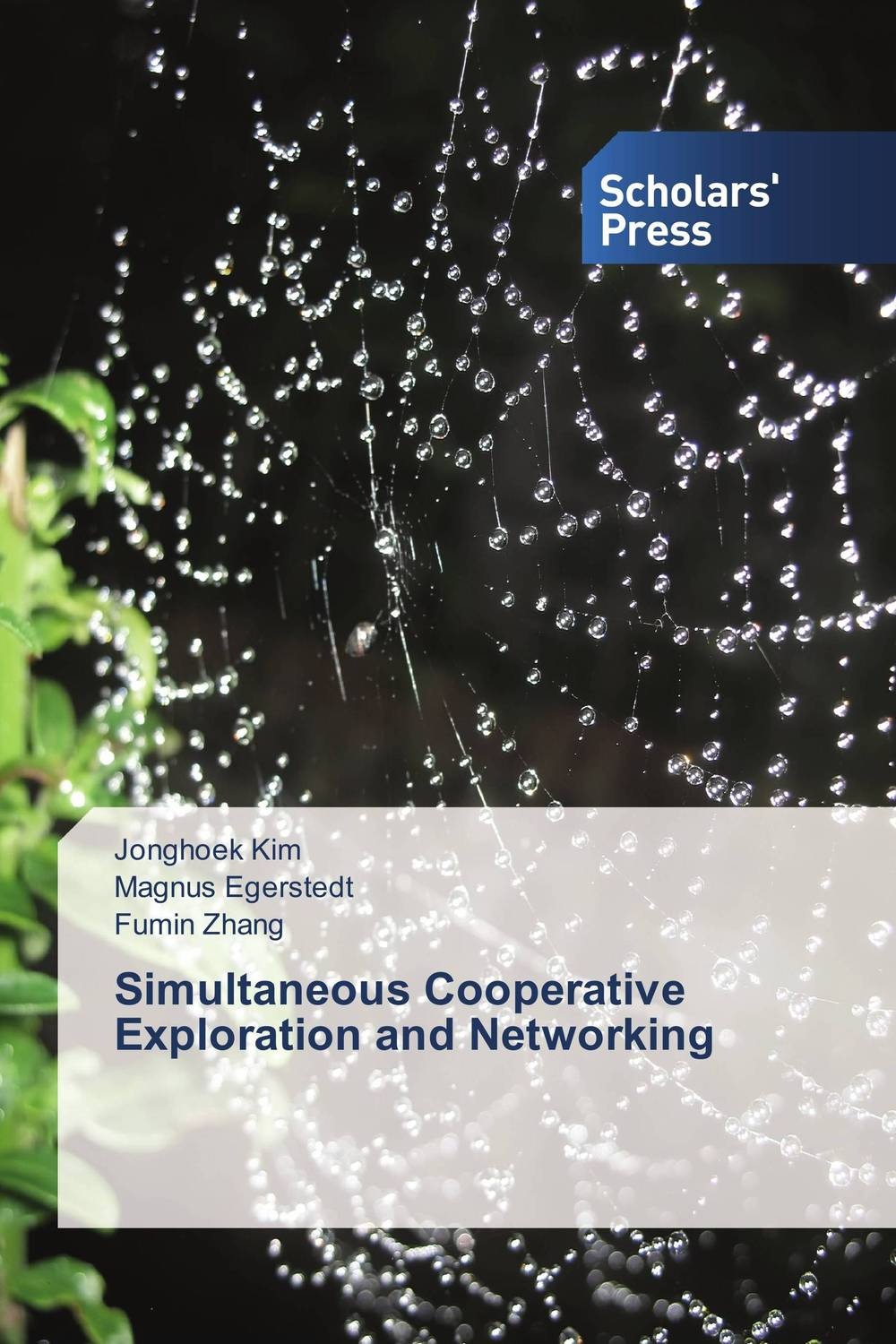 Simultaneous Cooperative Exploration and Networking