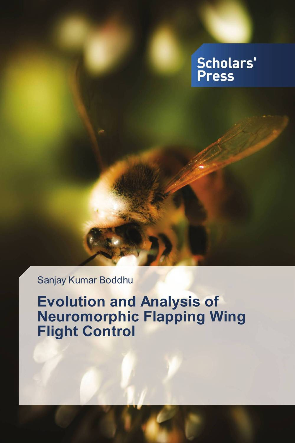 Evolution and Analysis of Neuromorphic Flapping Wing Flight Control the flight of icarus