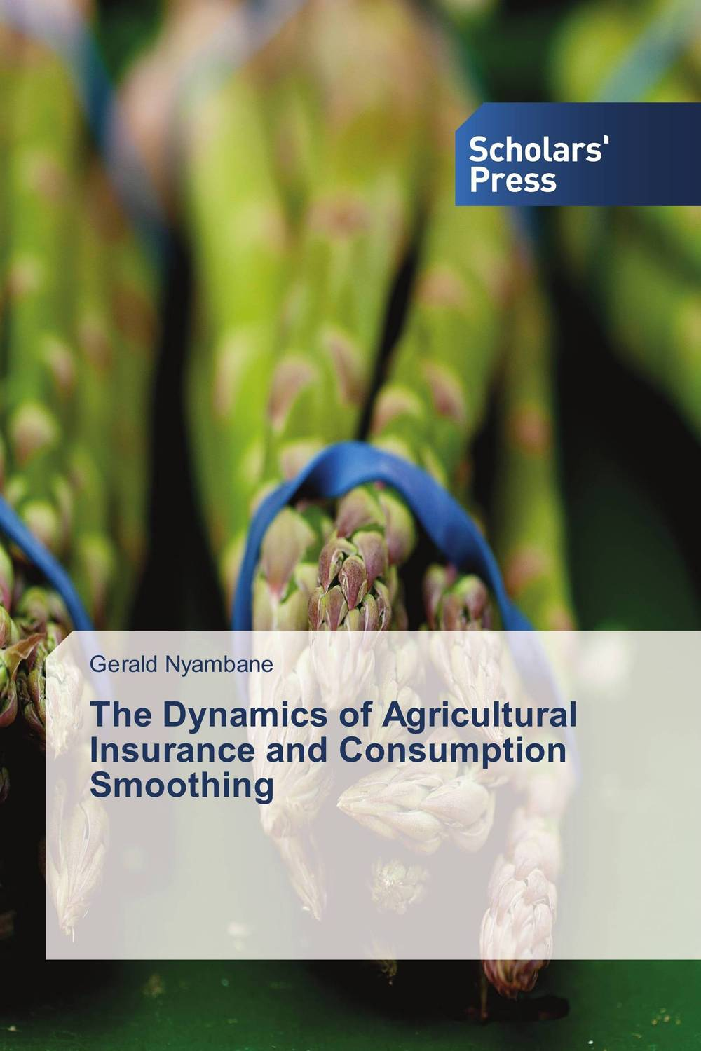 The Dynamics of Agricultural Insurance and Consumption Smoothing