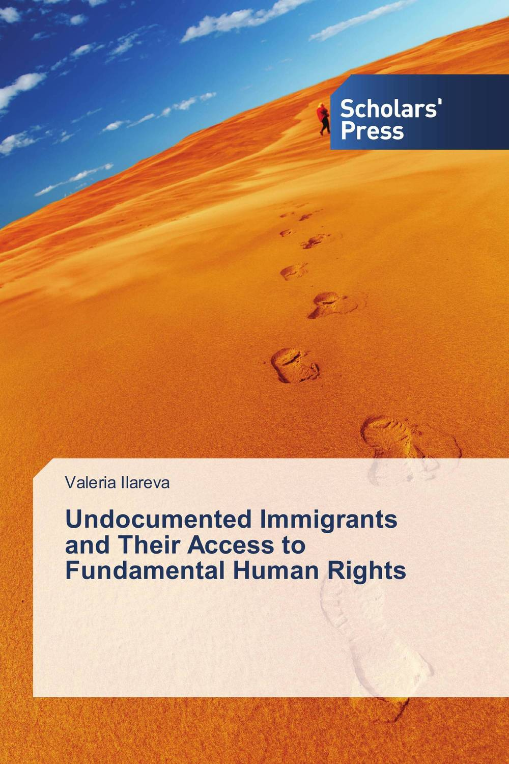 Undocumented Immigrants and Their Access to Fundamental Human Rights the inhuman