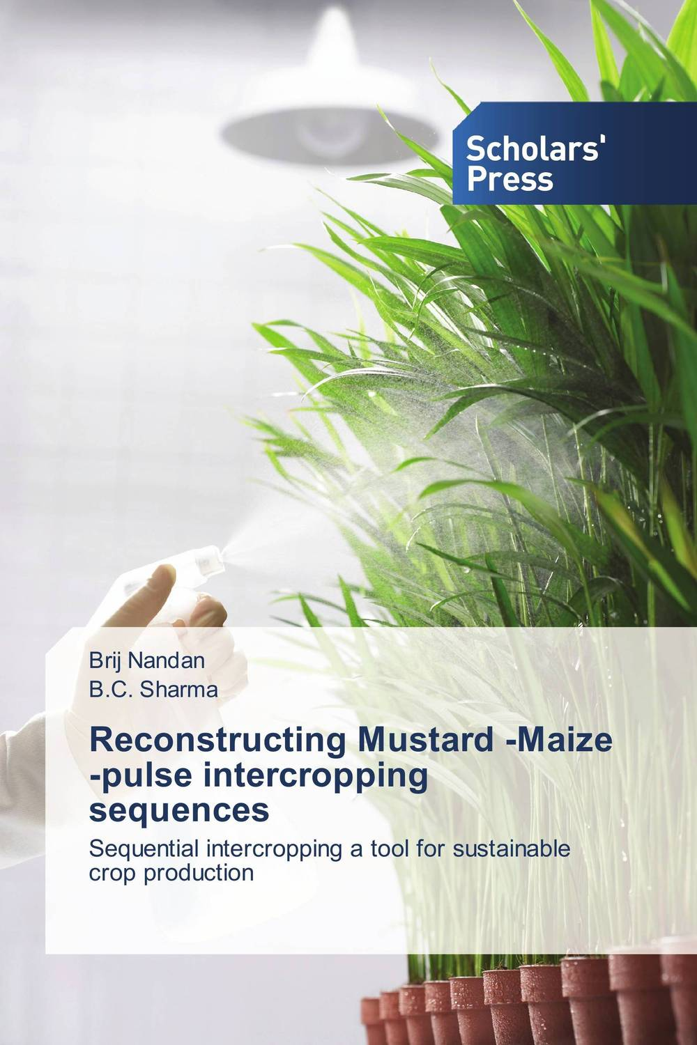 Reconstructing Mustard -Maize -pulse intercropping sequences reconstructing human origins 2e