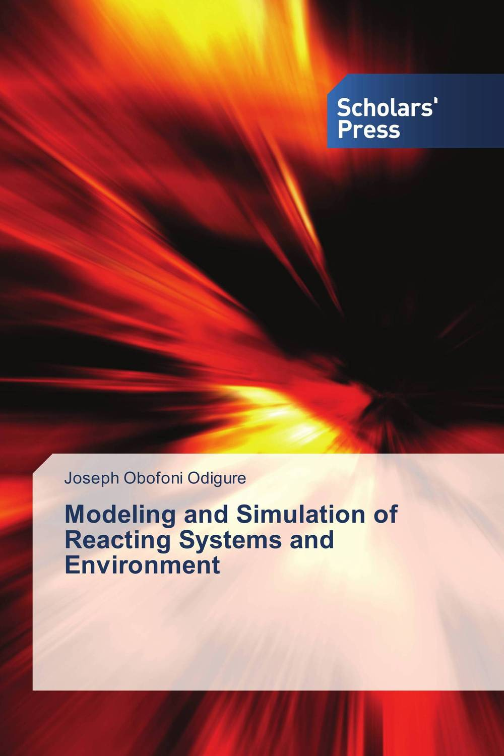 Modeling and Simulation of Reacting Systems and Environment