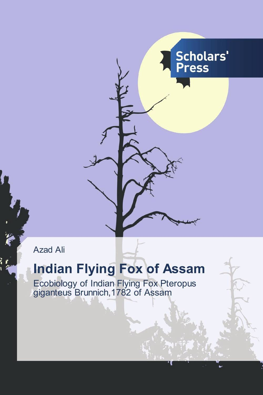 Indian Flying Fox of Assam