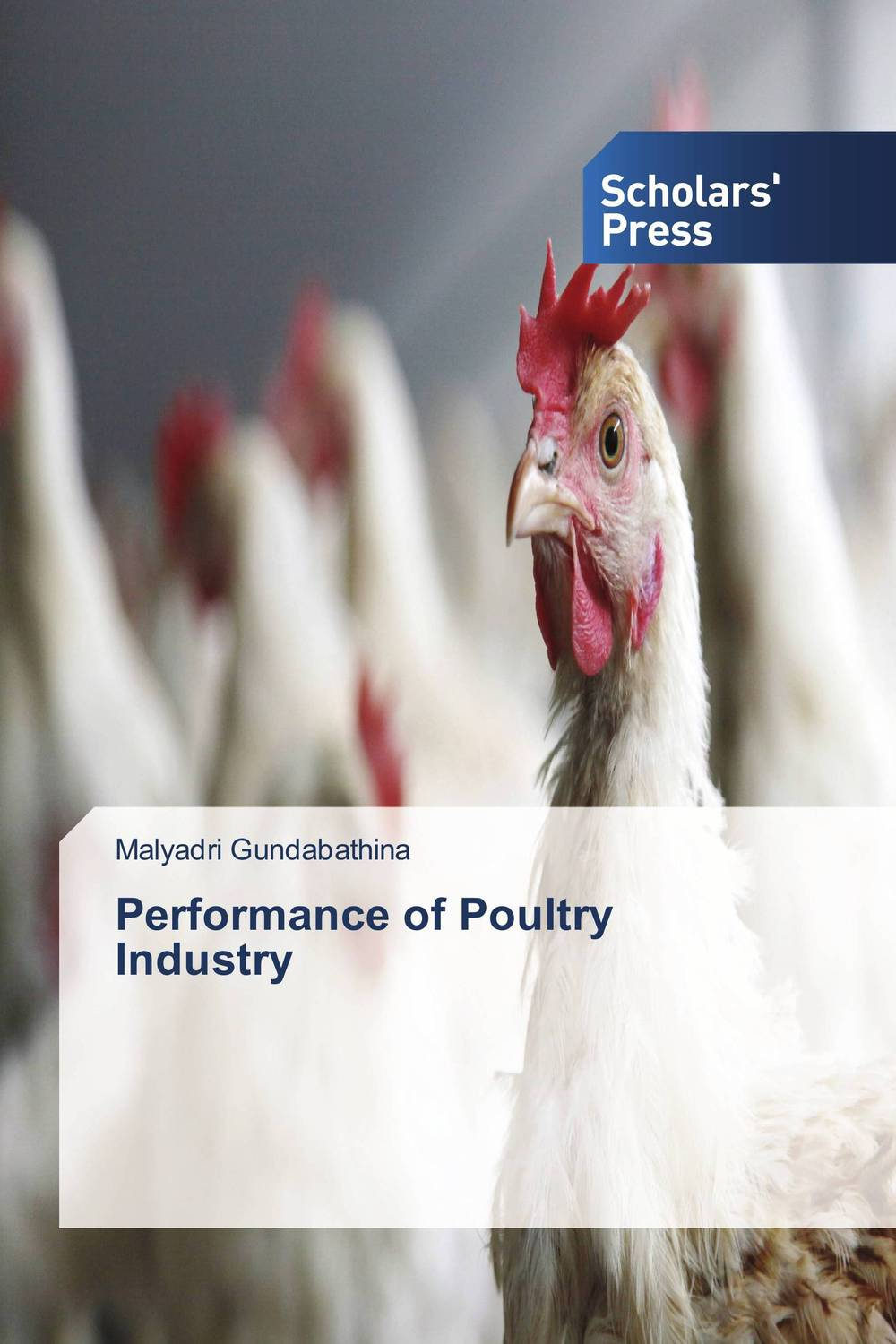 Performance of Poultry Industry