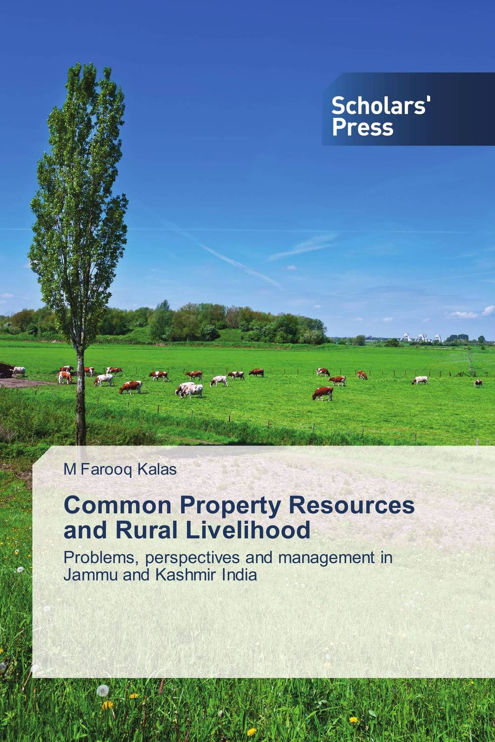 Common Property Resources and Rural Livelihood