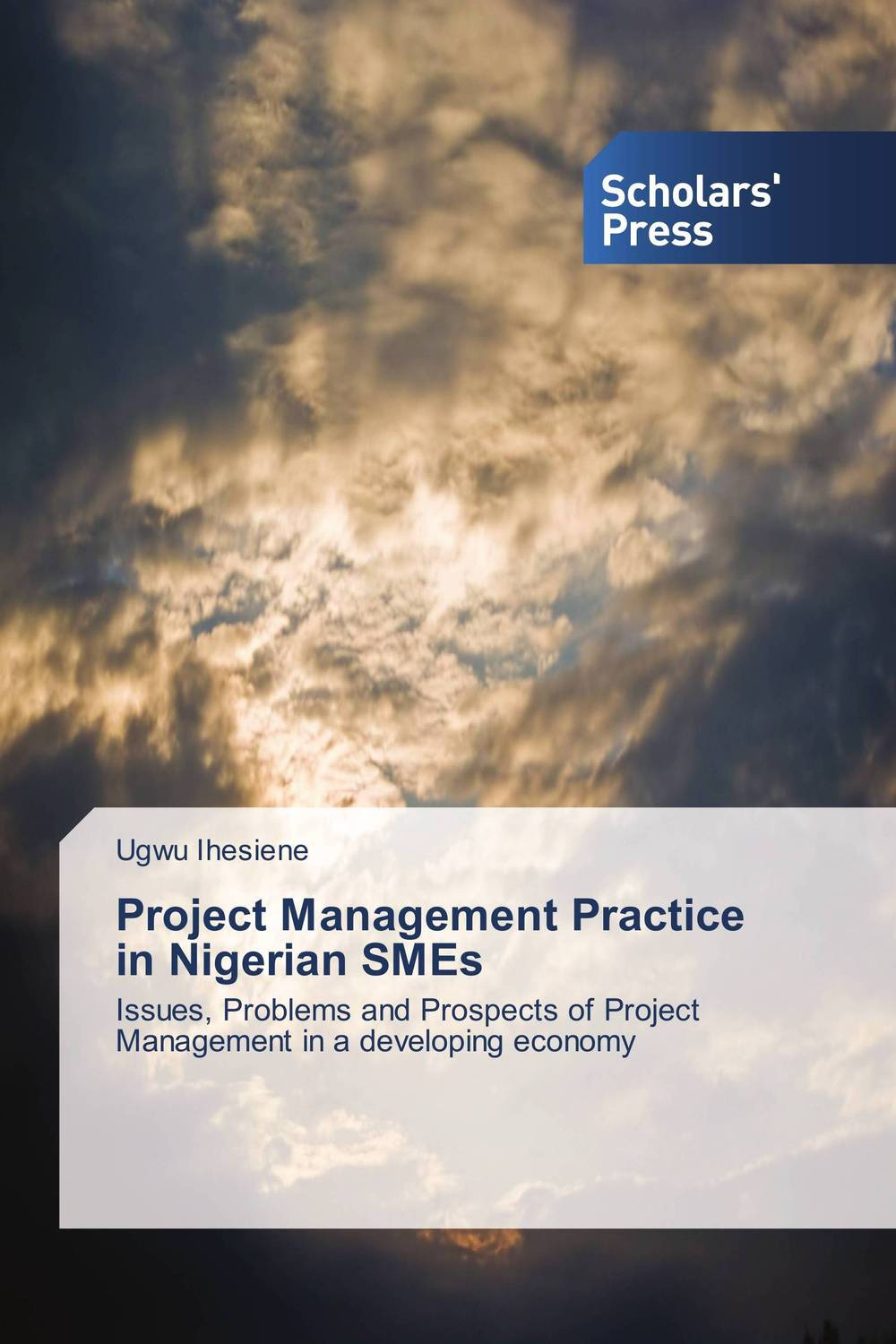 купить Project Management Practice in Nigerian SMEs недорого