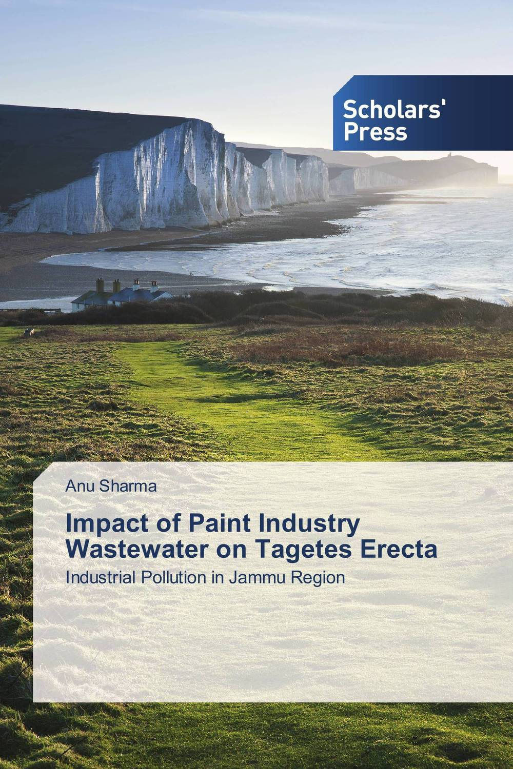 Impact of Paint Industry Wastewater on Tagetes Erecta impact of the handicraft industry on the environment