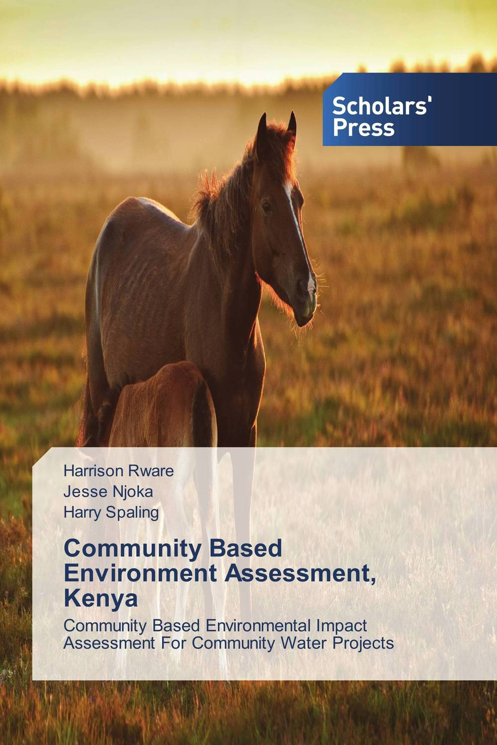 Community Based Environment Assessment, Kenya community based disaster assessment