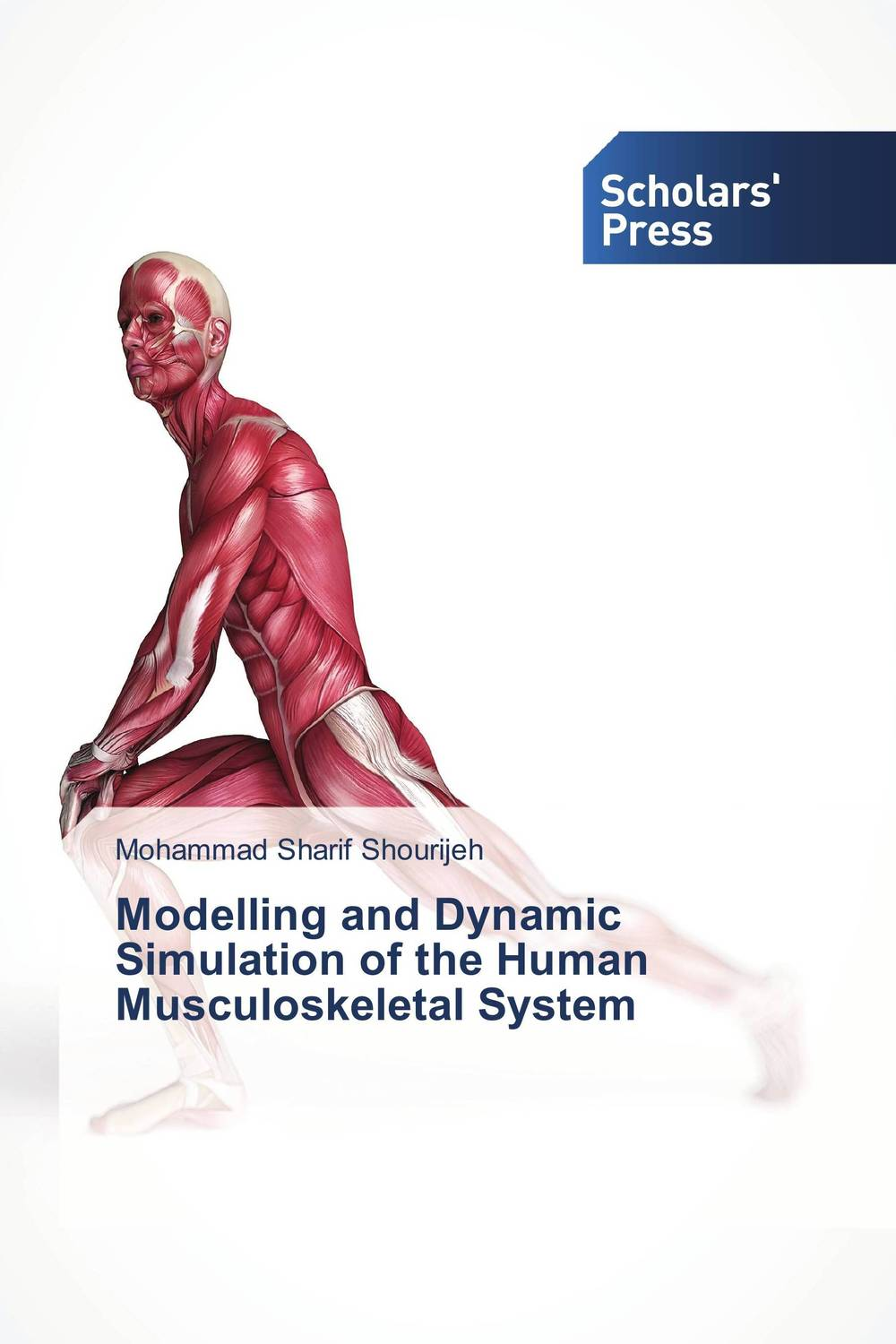 Modelling and Dynamic Simulation of the Human Musculoskeletal System joshua owusu sekyere simulation of water table control systems