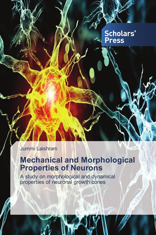 купить Mechanical and Morphological Properties of Neurons недорого
