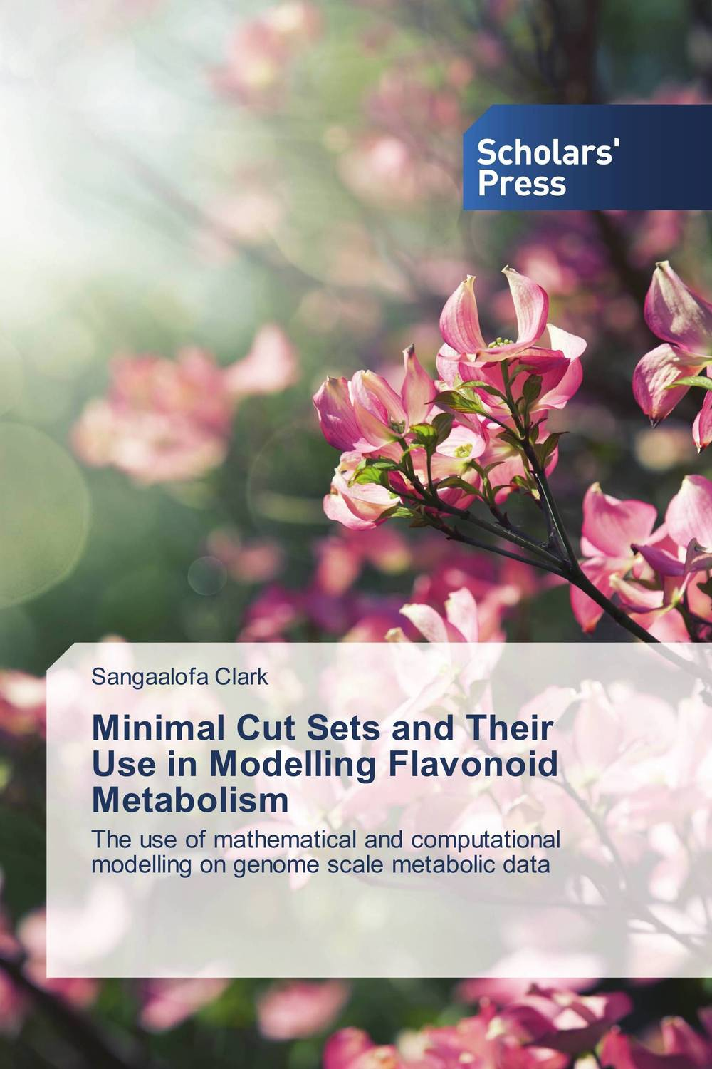 Minimal Cut Sets and Their Use in Modelling Flavonoid Metabolism seeing things as they are