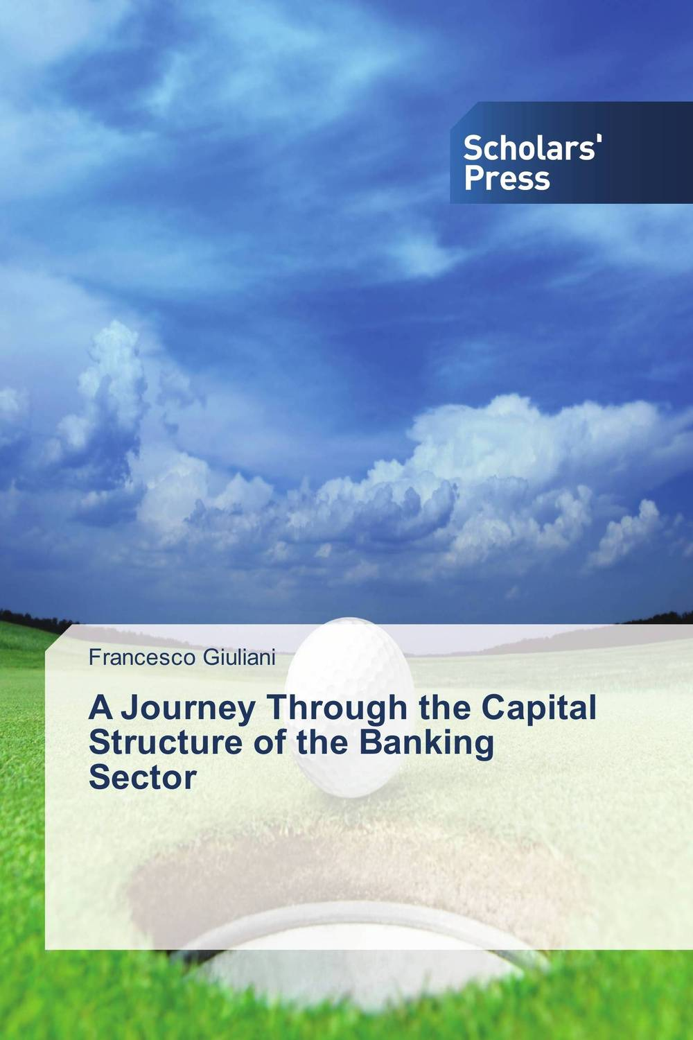 A Journey Through the Capital Structure of the Banking Sector morais r the hundred foot journey