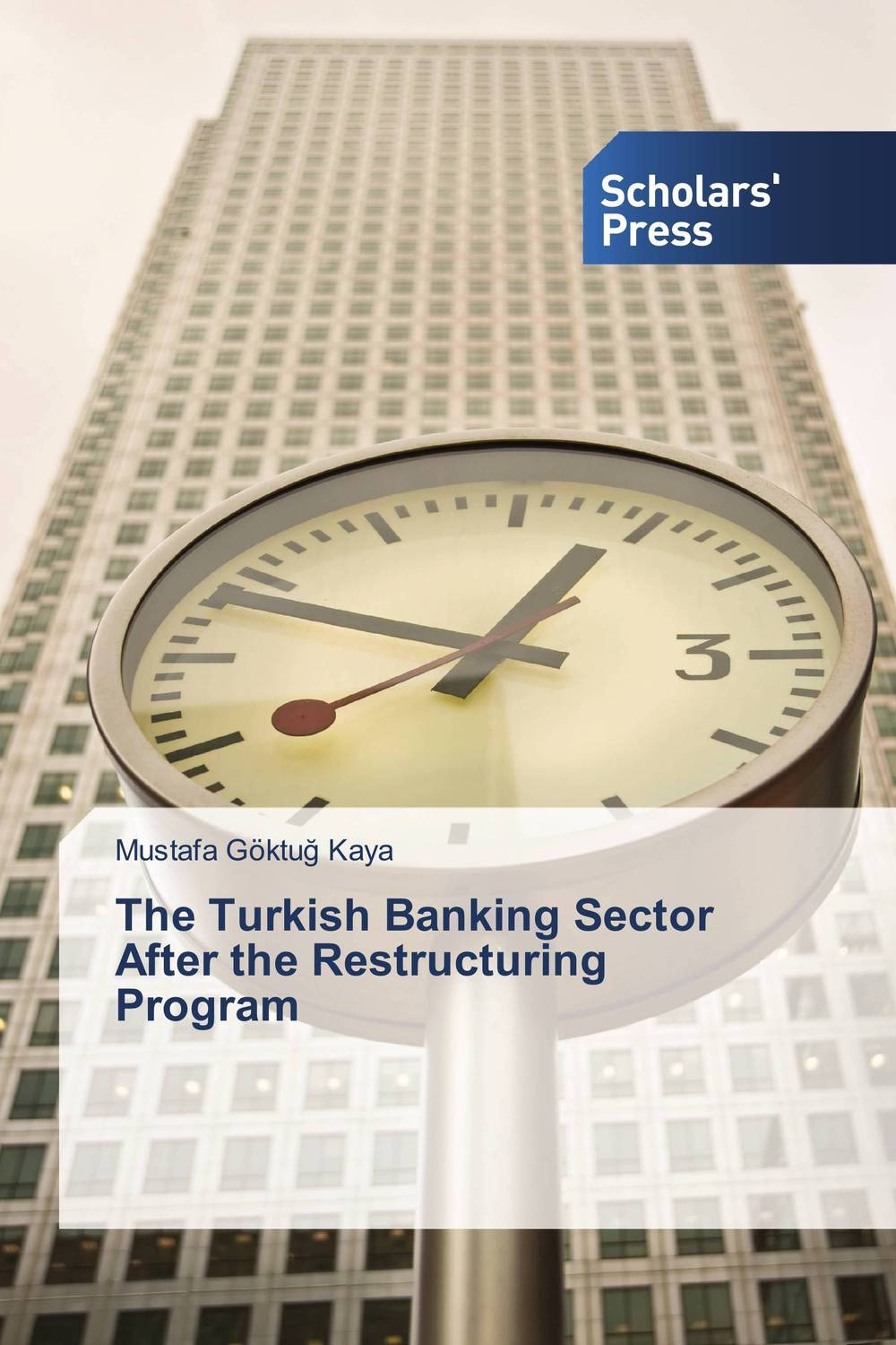 The Turkish Banking Sector After the Restructuring Program asset liability management in banking sector