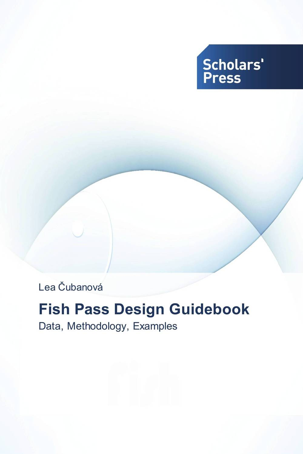 Fish Pass Design Guidebook