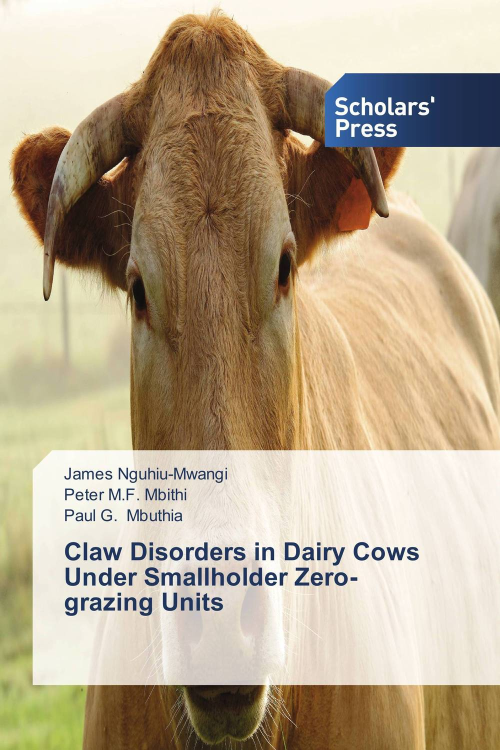 Claw Disorders in Dairy Cows Under Smallholder Zero-grazing Units claw disorders in dairy cows under smallholder zero grazing units