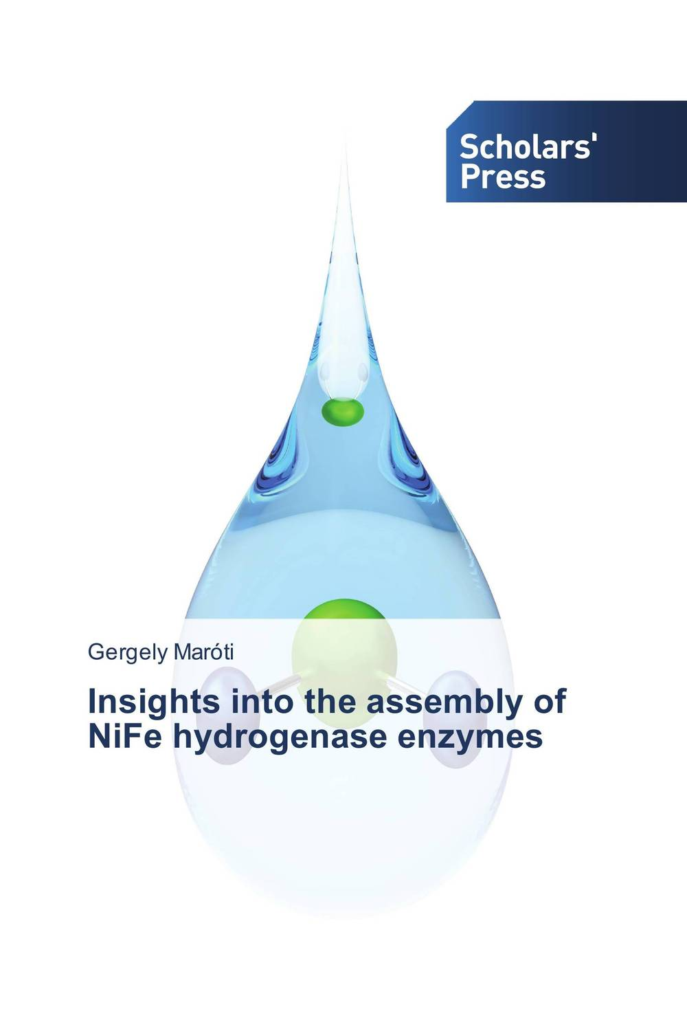 Insights into the assembly of NiFe hydrogenase enzymes molecular hydrogen magie