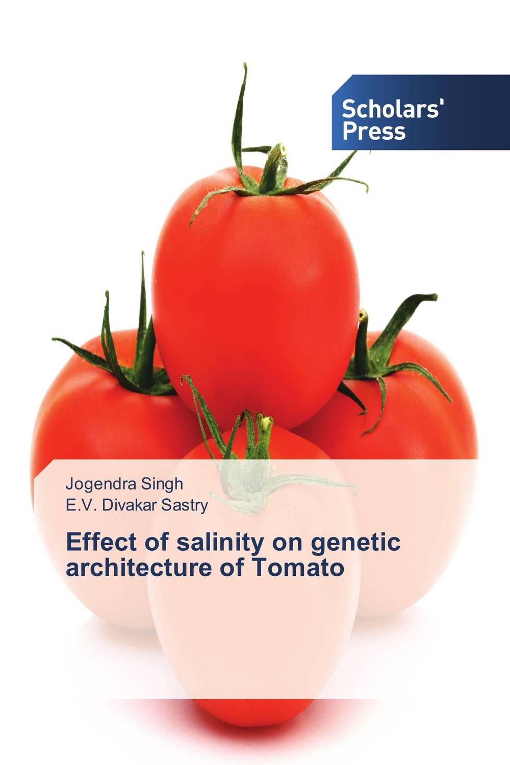 Effect of salinity on genetic architecture of Tomato wheat breeding for rust resistance