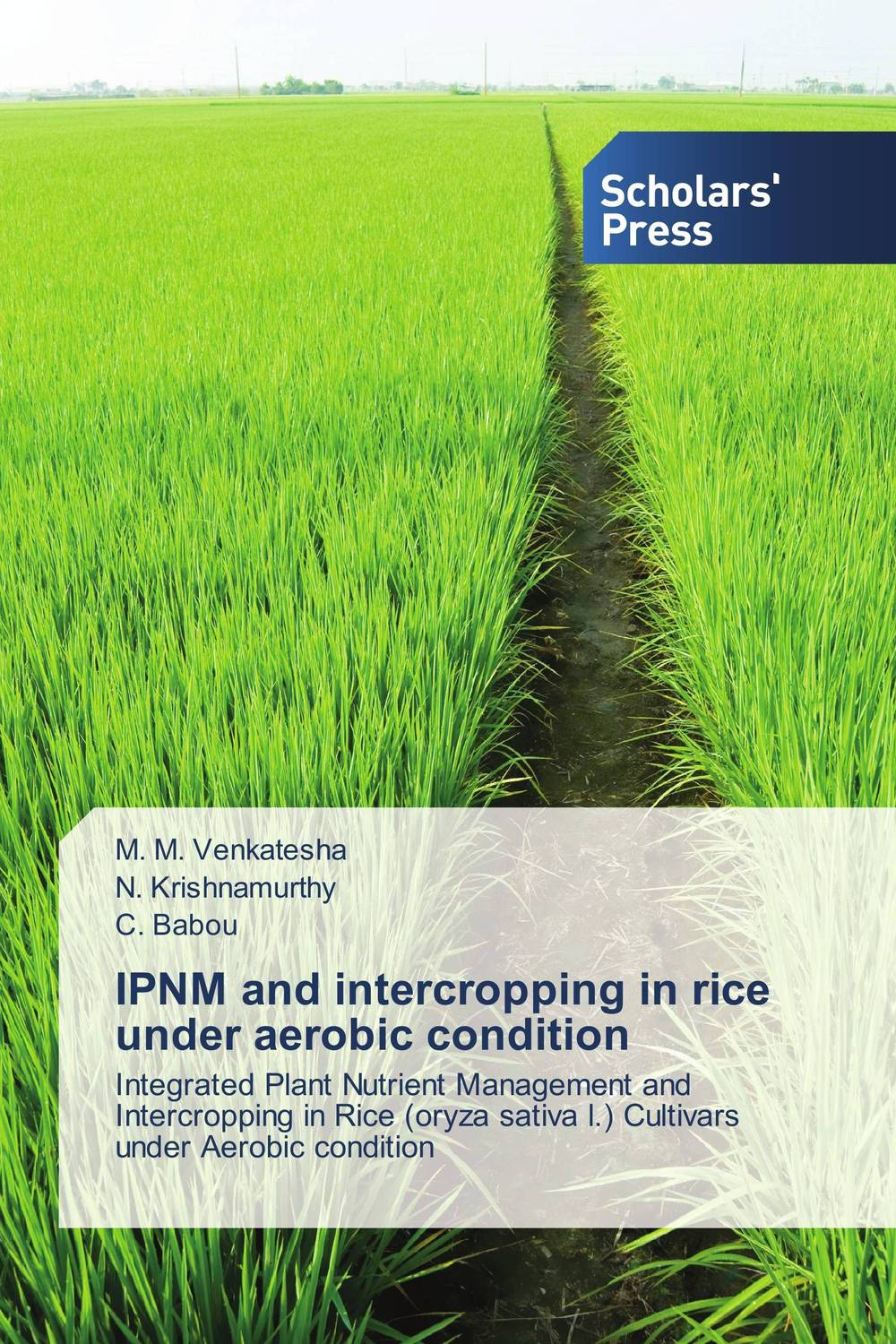 IPNM and intercropping in rice under aerobic condition natural enemy fauna in rice wheat system of india