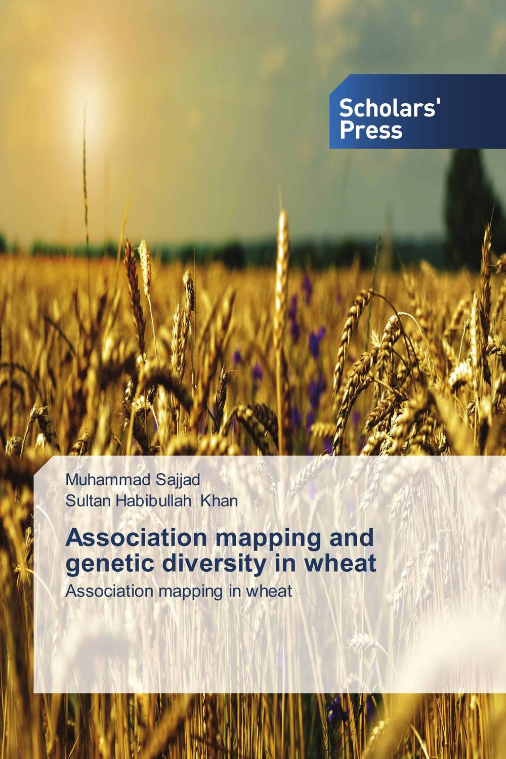 Association mapping and genetic diversity in wheat vaishali shami naresh pratap singh and pramod kumar pal morpho physio and genetic diversity analysis on indian wheat genotypes