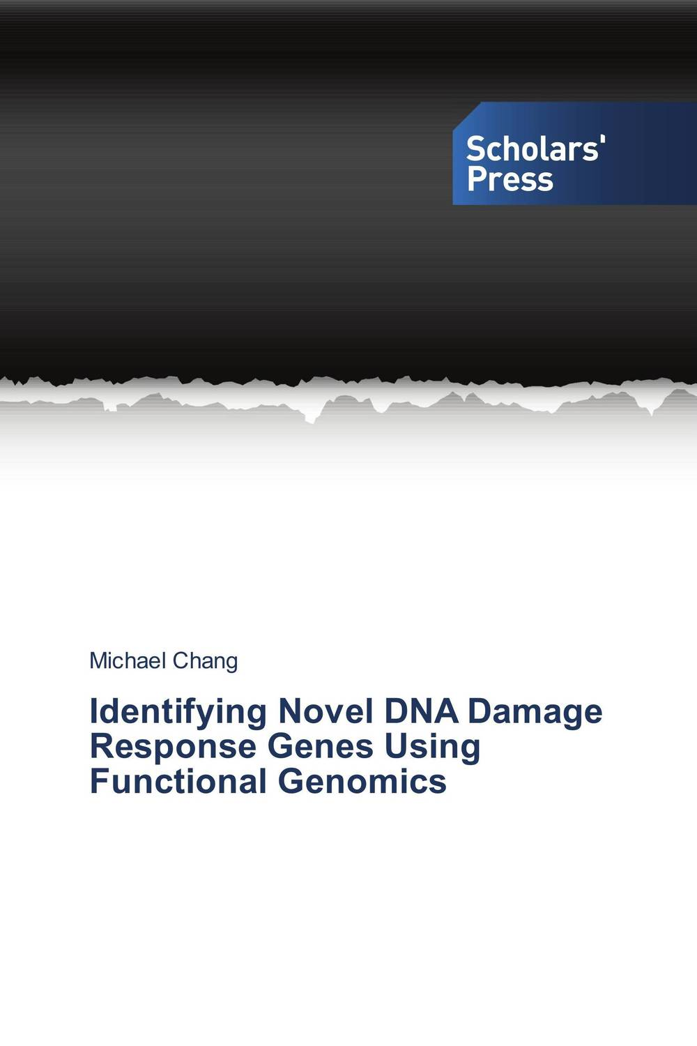 Identifying Novel DNA Damage Response Genes Using Functional Genomics modified pnas synthesis and interaction studies with dna