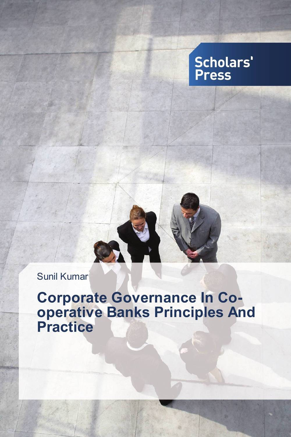 Corporate Governance In Co-operative Banks Principles And Practice corporate governance in nigerian banks