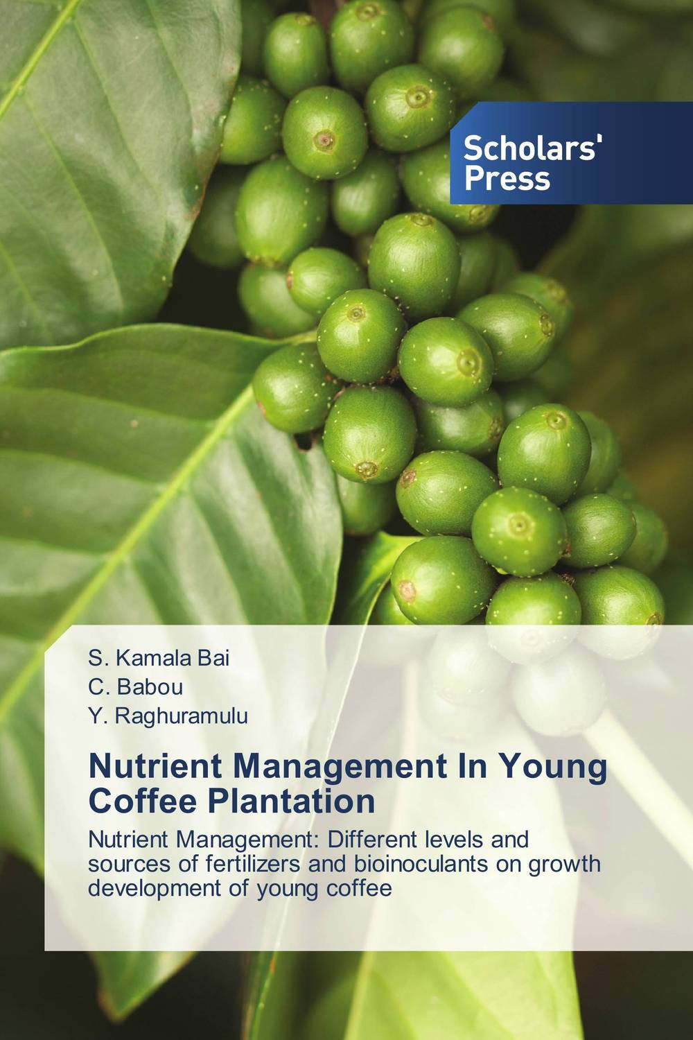 Nutrient Management In Young Coffee Plantation spring in the garden flowers and seedlings