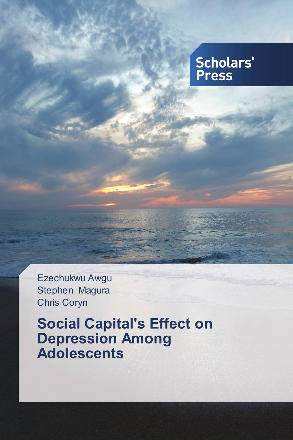 Social Capital's Effect on Depression Among Adolescents capital structure and risk dynamics among banks