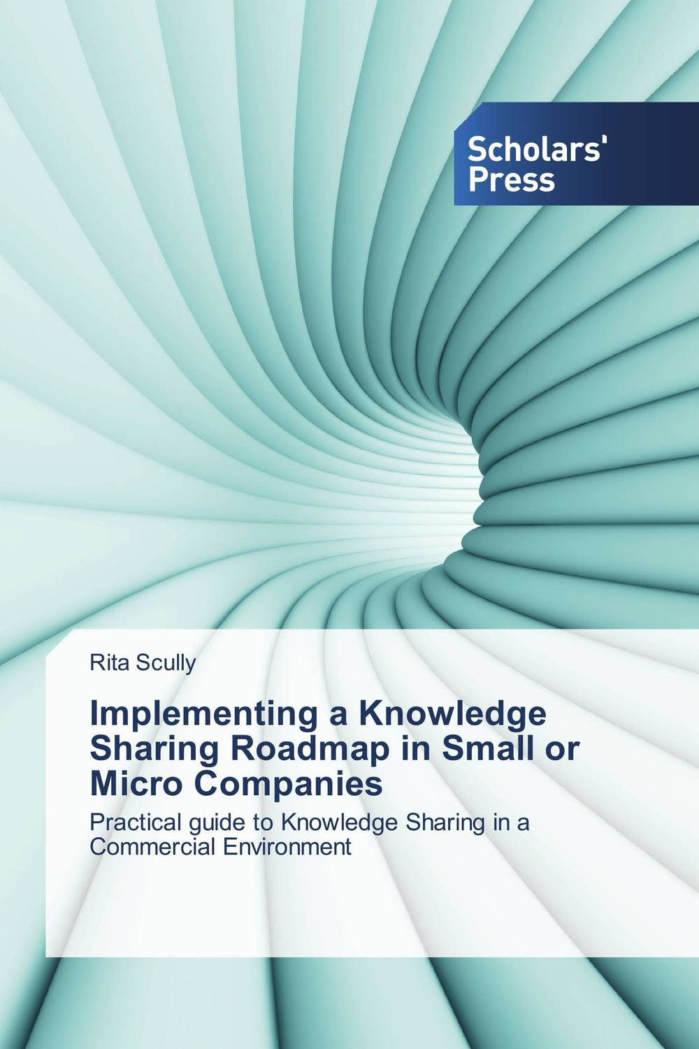 Implementing a Knowledge Sharing Roadmap in Small or Micro Companies roadmap to nigerian democracy issues and challenges