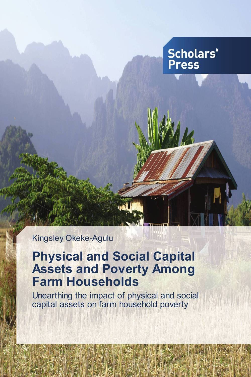 Physical and Social Capital Assets and Poverty Among Farm Households why nations fail the origins of power prosperity and poverty