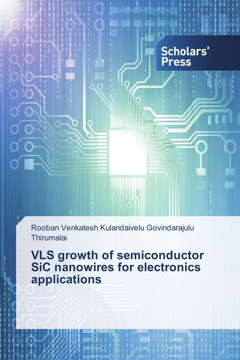 VLS growth of semiconductor SiC nanowires for electronics applications customer orientation as a basis for corporate growth